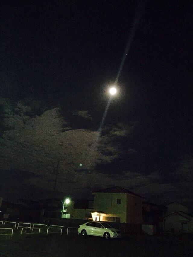 月がきれい