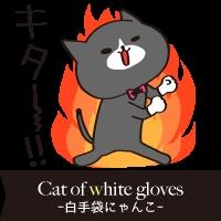 白手袋ニャンコ