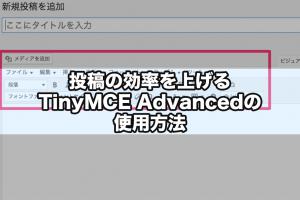 投稿の効率を上げるTinyMCE Advancedの使用方法