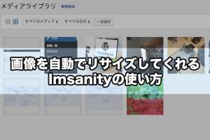 画像を自動でリサイズしてくれるImsanityの使い方