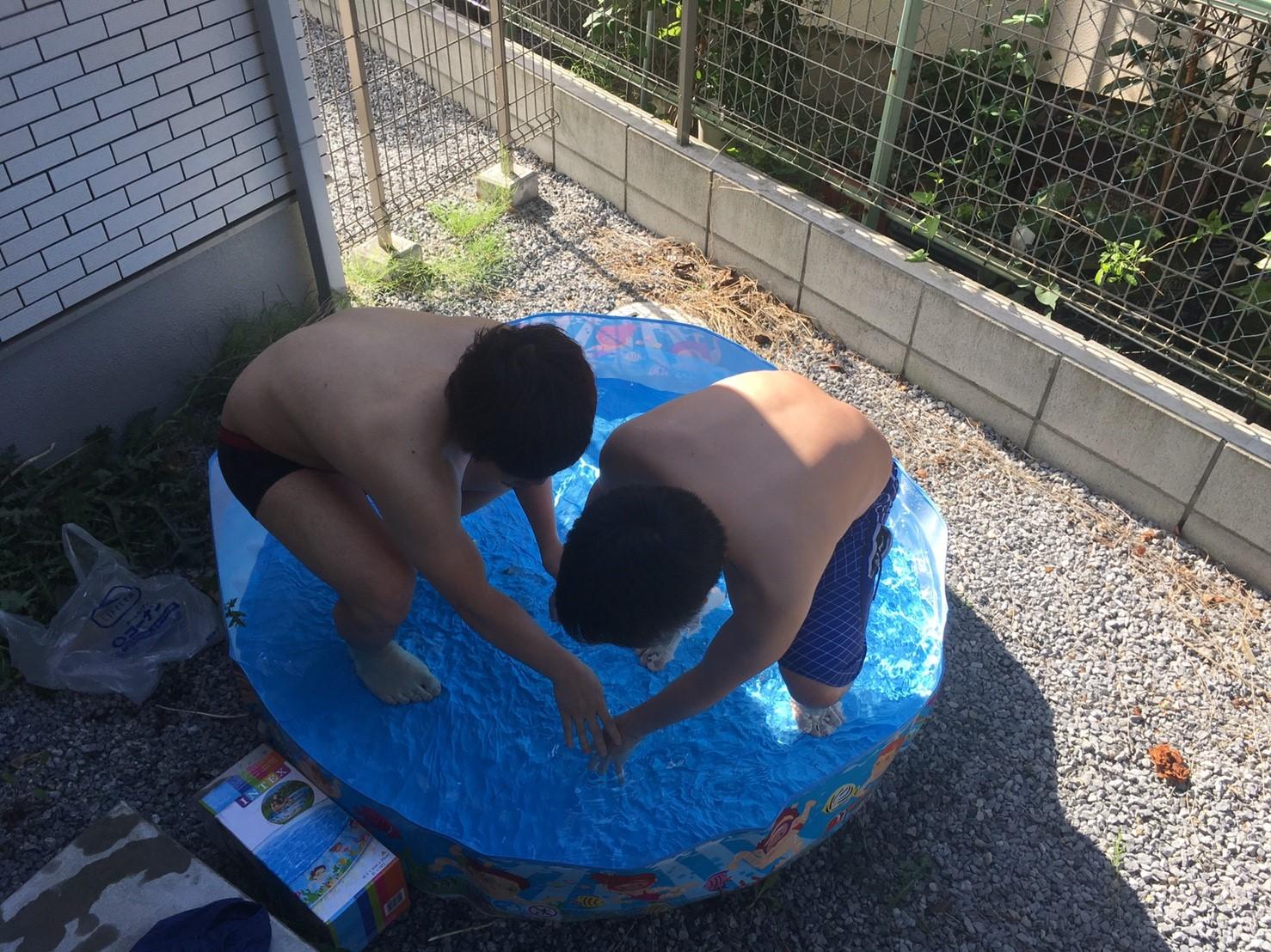 プールで遊ぶ周太郎氏とひでぶ