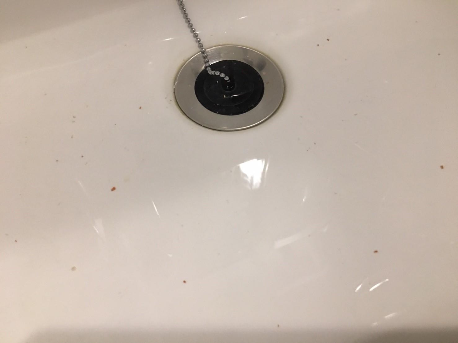 歯ブラシの場合