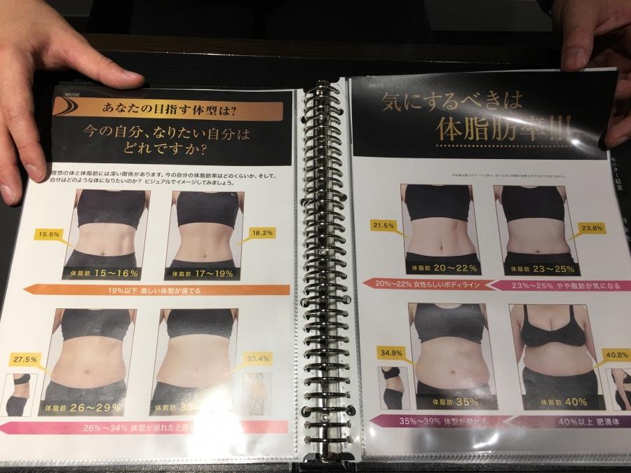 女の体脂肪と見た目のデータ