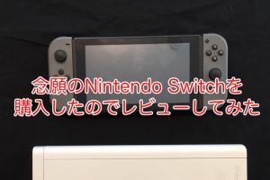 念願のNintendo Switchを購入したのでレビューしてみた