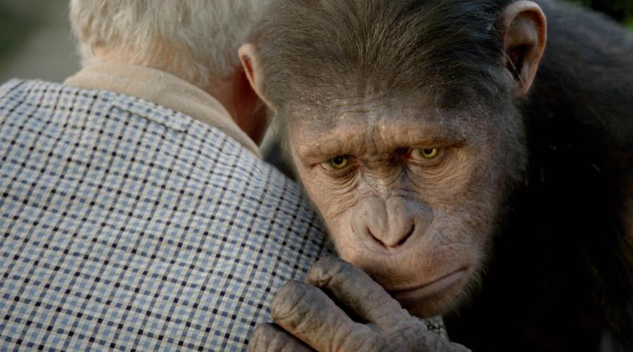 「猿の惑星:創世記(ジェネシス)」