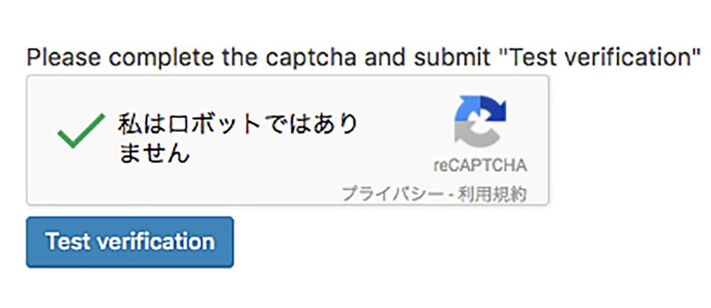 「私はロボットではありません」にチェックを入れて、「Test verification」をクリック